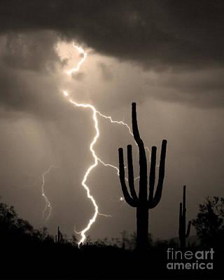 Giant Saguaro Cactus Lightning Strike Sepia  Art Print by James BO  Insogna