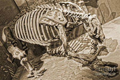 Painting - Giant Sloth Bones At The Smithsonian by Gregory Dyer