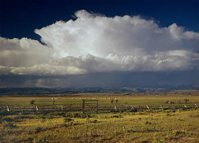 Photograph - 1m9401-giant Thunderhead Over The Wind River Mountains by Ed  Cooper Photography