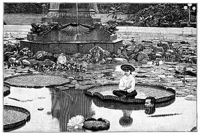 Floating Girl Photograph - Giant Water Lilies by Science Photo Library