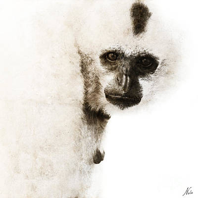 Digital Art - Crested Gibbon #1 by Nola Lee Kelsey