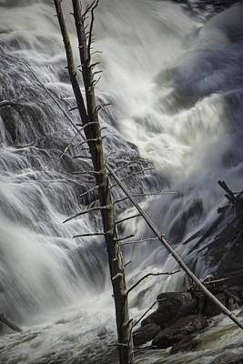 Photograph - Gibbons Falls In Yellowstone No 2768 by Randall Nyhof