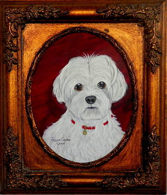 Painting - Gidget.my Maltese by Fram Cama