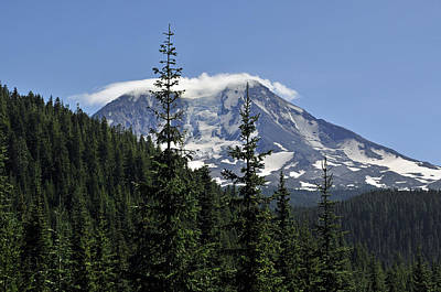 Gifford Pinchot National Forest And Mt. Adams Art Print by Tikvah's Hope
