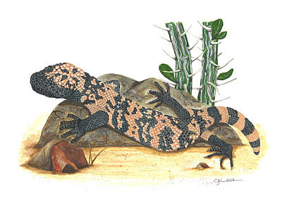 Painting - Gila Monster by Cindy Hitchcock