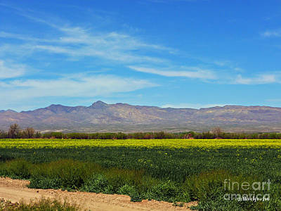Photograph - Gila Mountains by Methune Hively