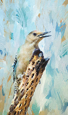 Photograph - Gila Woodpecker by Barbara Manis