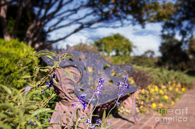 Gilcrease Photograph - Gilcrease House Garden Flower by Tamyra Ayles
