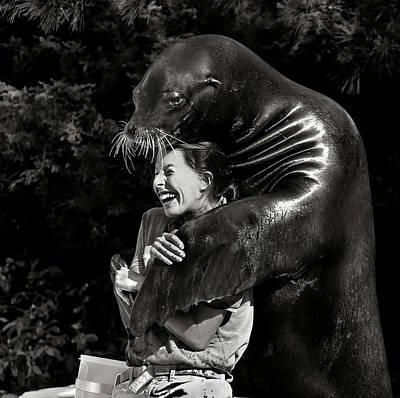 Seals Wall Art - Photograph - Gimme A Hug by Michael Castellano
