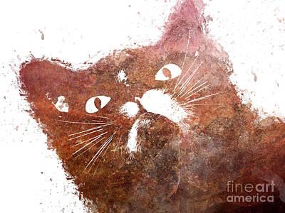 Beauty Digital Art - Ginger Cat by Justyna JBJart