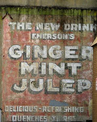 Photograph - Ginger Mint Julep by Bradford Martin