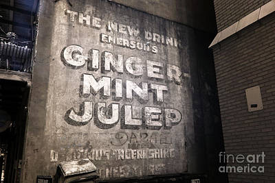 Photograph - Ginger Mint Julep Infrared by John Rizzuto