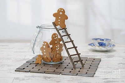 Gingerbread Photograph - Gingerbread Ladder by Amanda Elwell
