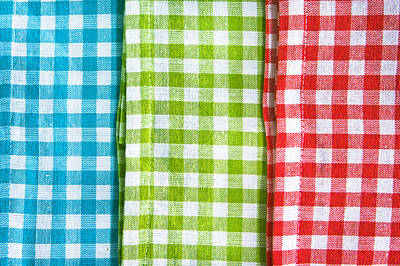 Checked Tablecloths Photograph - Gingham by Tom Gowanlock