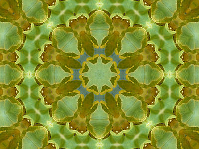 Photograph - Ginkgo Leaf Kaleidoscope Mandala by MM Anderson