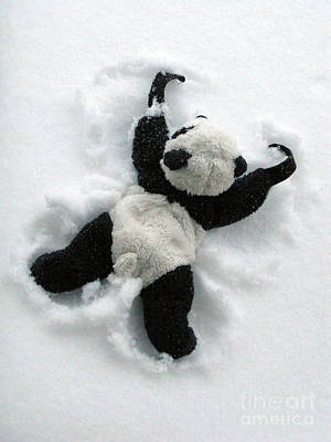 Photograph - Ginny The Baby Panda Making A Snow Angel by Ausra Huntington nee Paulauskaite