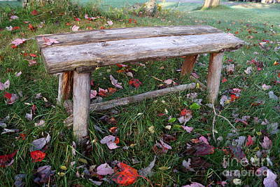 Photograph - Ginny's Bench by Kerri Mortenson