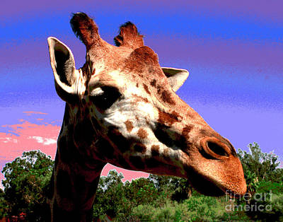 Photograph - Giraffe Buddy by Larry Oskin
