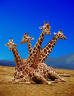 Basketball Patents - Giraffe Family by Raymond Klein