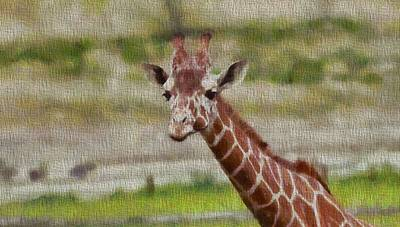 Smiling Mixed Media - Giraffe Portrait On Canvas by Dan Sproul