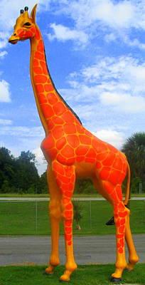 Photograph - Giraffe by Randall Weidner