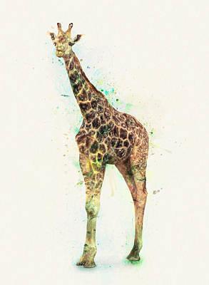 Bedroom Drawing - Giraffe Study by Taylan Apukovska