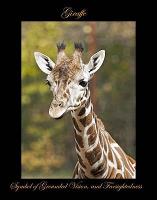 Photograph - Giraffe Symbol Of by Marty Maynard