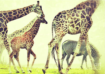 Pop Art - Giraffes and a zebra in the mist by Nick  Biemans