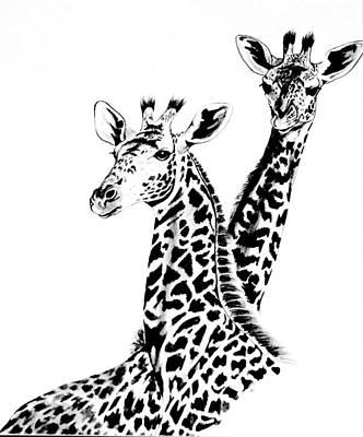 Giraffe Drawing - Giraffes by Cheryl Poland