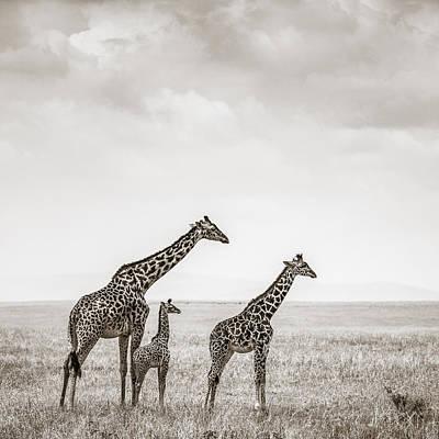 Mother And Children Photograph - Giraffes Masai Mara Kenya by Regina Mueller