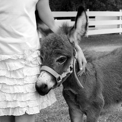 Girl And Baby Donkey Art Print
