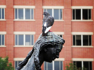 Photograph - Girl And Her Pigeon by Zinvolle Art