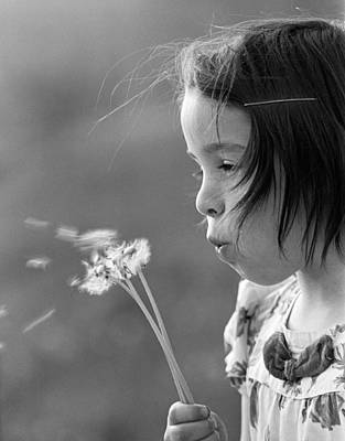 Blows Air Photograph - Girl Blowing On Dandelion C.1970s by H. Armstrong Roberts/ClassicStock