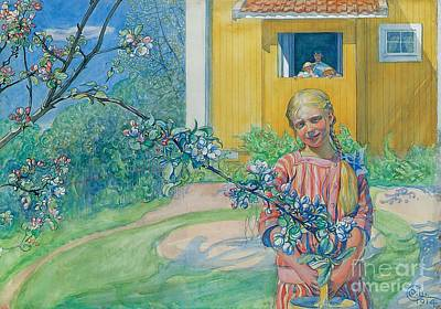 Apple Orchard Painting - Girl With Apple Blossom by Carl Larsson