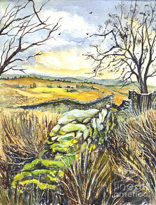 Gisburn Forest Lancashire Uk Art Print by Carol Wisniewski