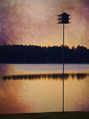 Birdhouse Photograph - Gisela's Birdhouse by Carol Leigh