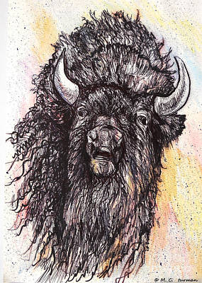 Painting - Give Me A Home Where The Buffalo Roam by M C Sturman