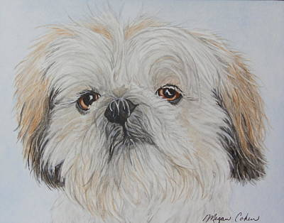 Dog Painting - Gizmo The Shih Tzu by Megan Cohen