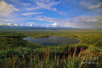 Snow-covered Landscape Photograph - Glacial Kettle Pond And  Denali by Yva Momatiuk John Eastcott