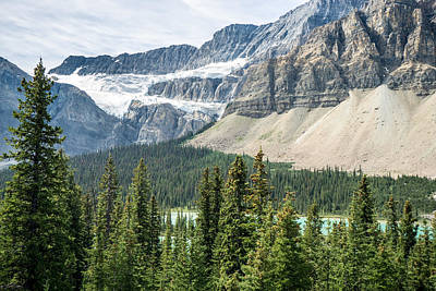 Glacier Alberta Canada Rockies Art Print