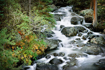 Gary Peterson Photograph - Glacier Creek by Gary Peterson
