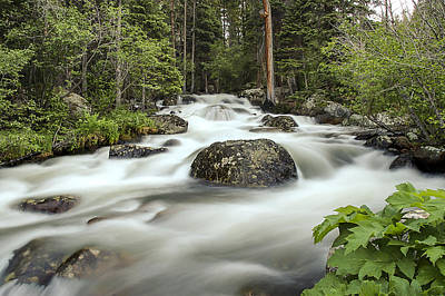 Photograph - Glacier Creek by Lee Kirchhevel