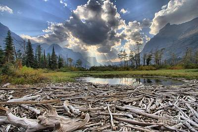 Photograph - Glacier Driftwood by Adam Jewell