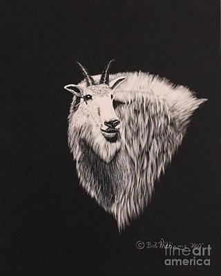 Glacier Park Goat Art Print