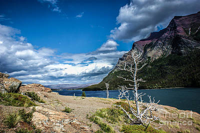 Photograph - Glacier Skies by Jim McCain