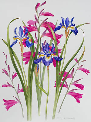 Pinks And Purple Petals Painting - Gladiolus And Iris Sibirica by Sally Crosthwaite