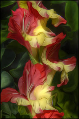 Photograph - Gladiolus by Erika Fawcett
