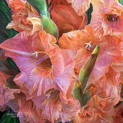 Mixed Media - Gladiolus Moods  - Orange Pink by Carol Cavalaris