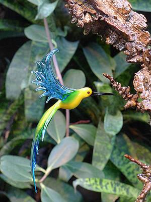 Photograph - Glass Bird I by Richard Reeve