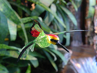 Photograph - Glass Bird IIi by Richard Reeve